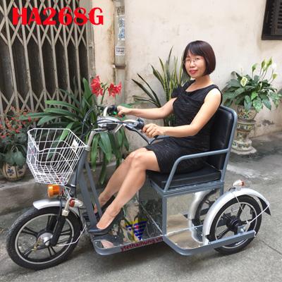 xe lăn điện 3 bánh