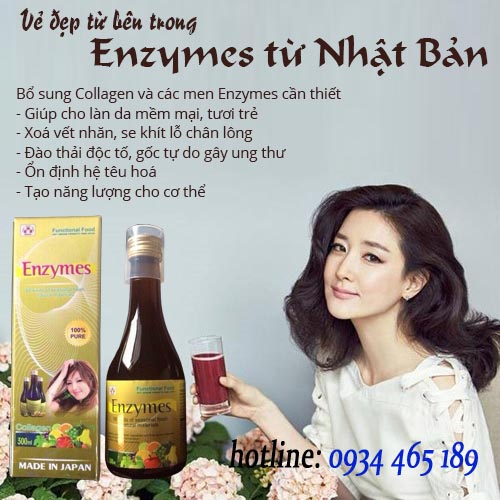 Collagen-Enzymes