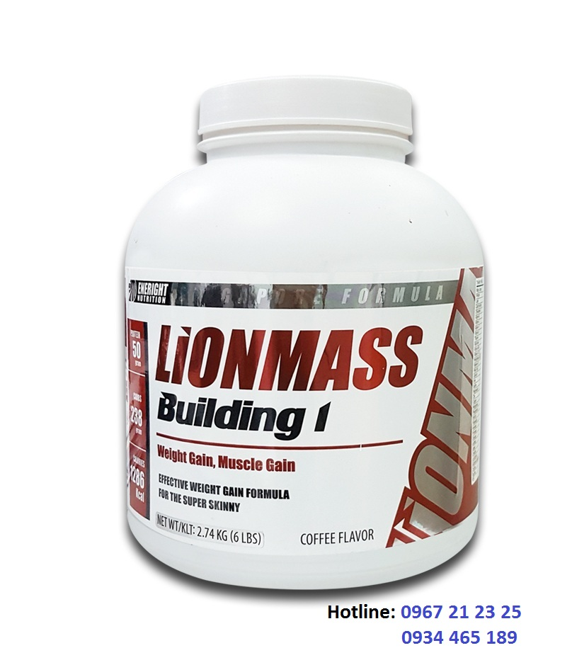 lionmass-building 1