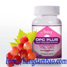 opc_plus_cua_amkey