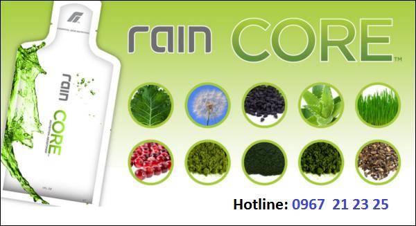 rain-core