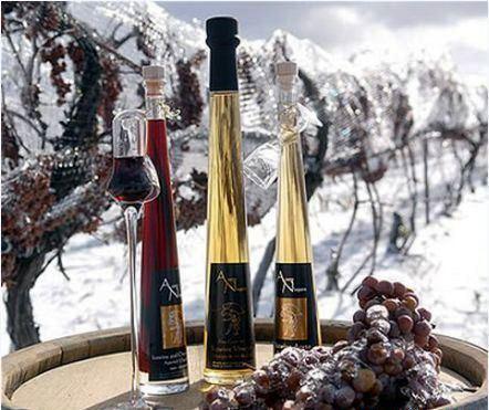 rượu vang tuyêt ice wines