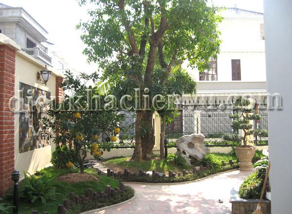 Tiểu cảnh sân vườn nhà phố