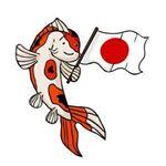 điều thú vị về cá Koi