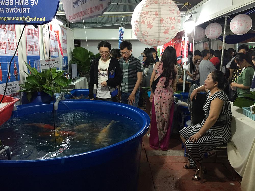 Lễ hội văn hóa Việt Nhật