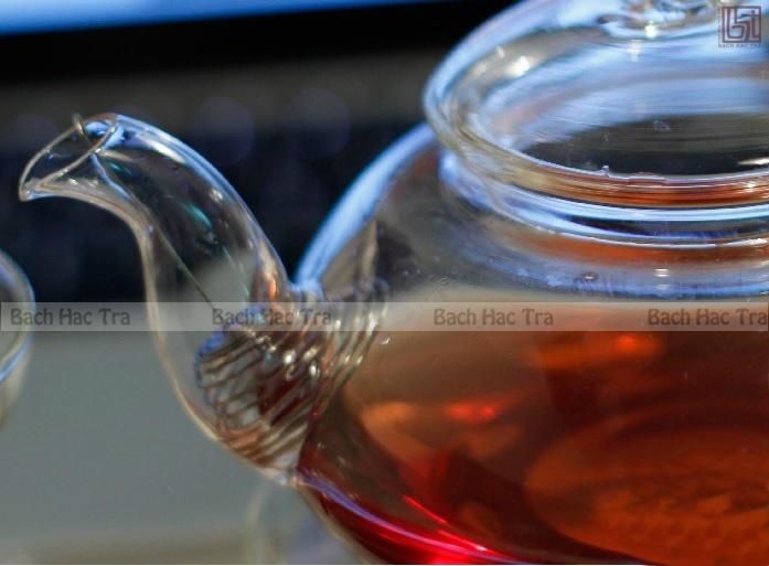 ấm trà thủy tinh dung tích 450ml lõi lọc lò xo