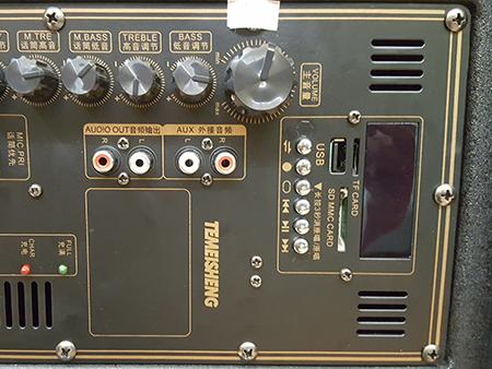 Loa kéo di động Temeisheng TMS212-01