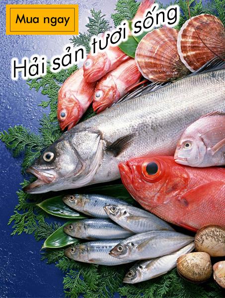 Hải sản tươi sống - Standardfood