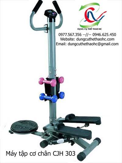Máy tập cơ chân CJH 303