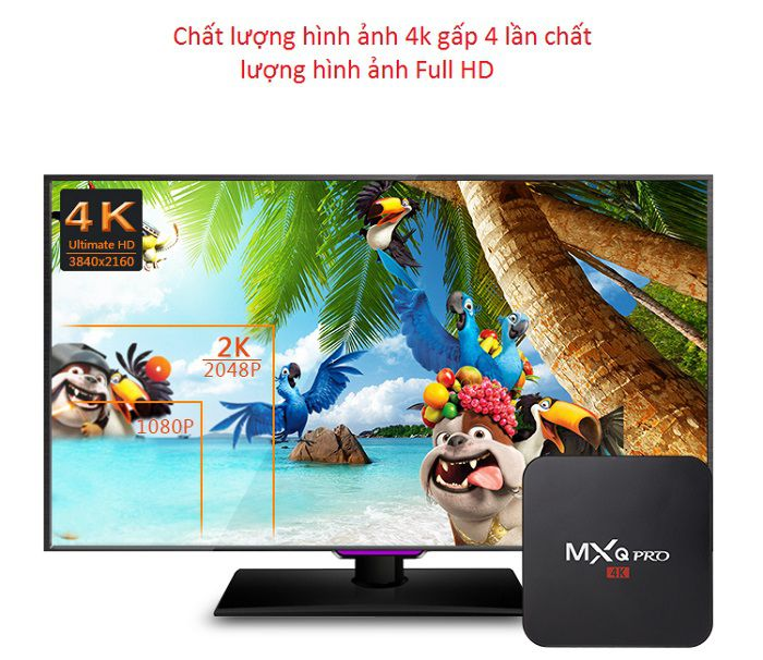 android-tv-box-mxq-pro-4k-hinh-anh-4k