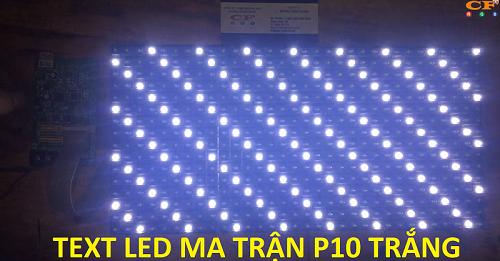 led ma trận p10 trắng