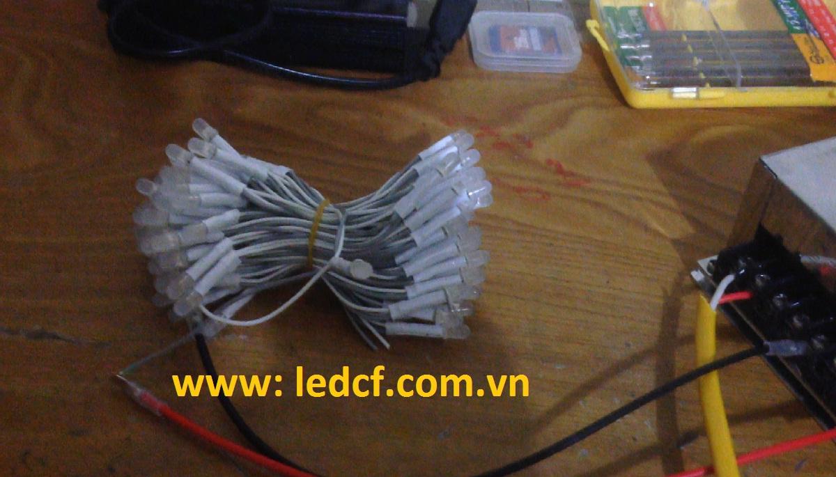 led liền dây ledlamps