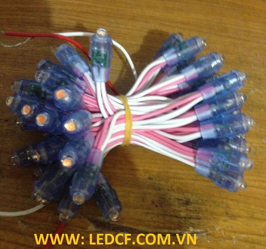 led duc 2
