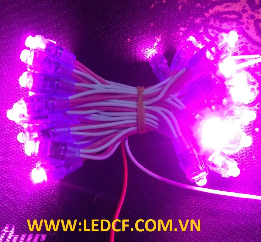 Phương pháp lắp đặt đèn led đúc chiếu sáng