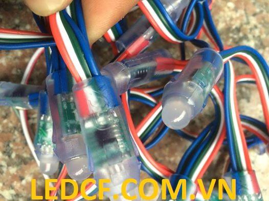led-full-color-9883-ledcf