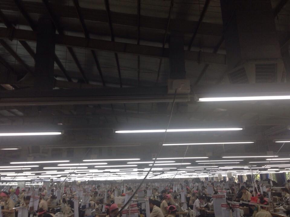 hệ thống làm mát xưởng may