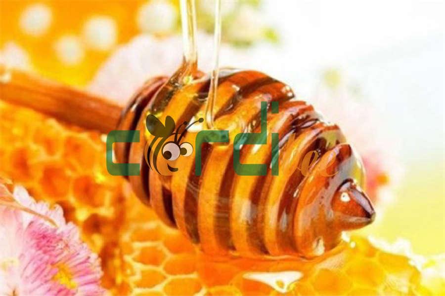 Mật ong kết tinh đường thật hay giả?