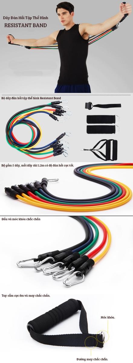thiết kế đàn hồi tập thể hình Resistant Band