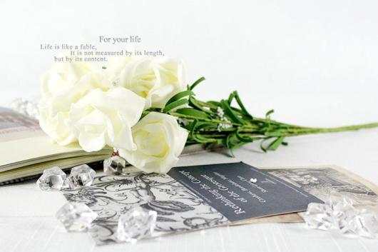 Hoa hong vintage dep