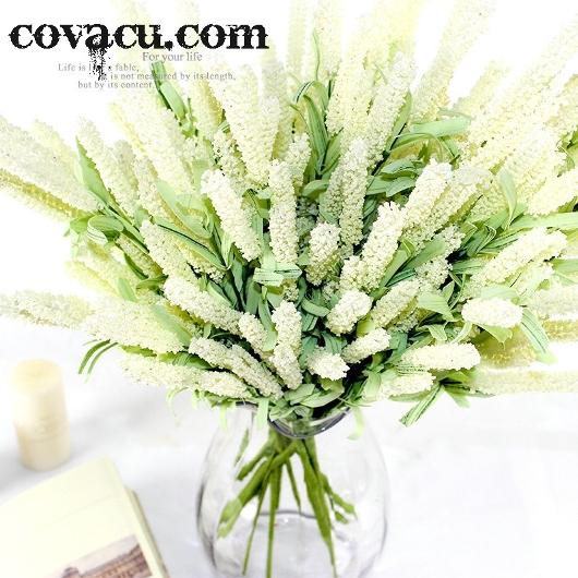 Hoa oải hương giả