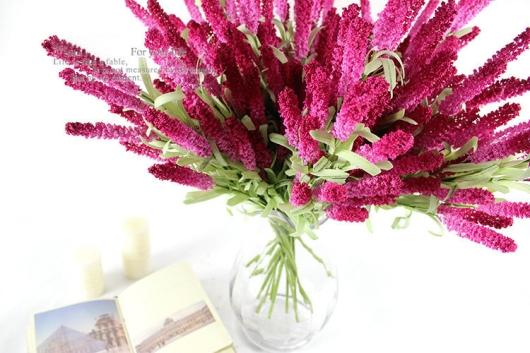 Hoa oải hương cách đẹp