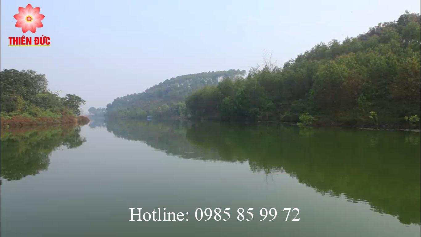 Hồ thiên long