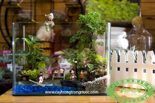 terrarium aquagarden