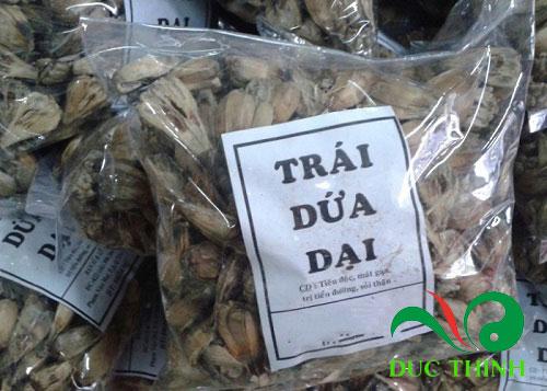 Công dụng chữa bệnh của quả dứa dại rừng - 215933