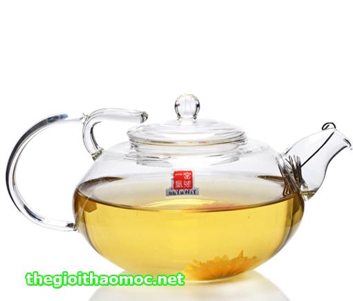 ấm trà thủy tinh 500ml