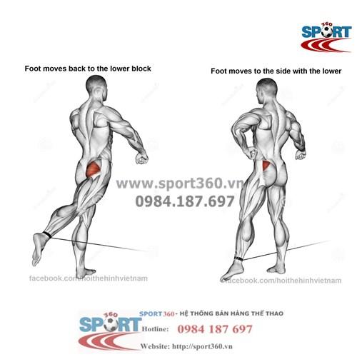 Dây quấn cổ chân hỗ trợ tập mông và chân