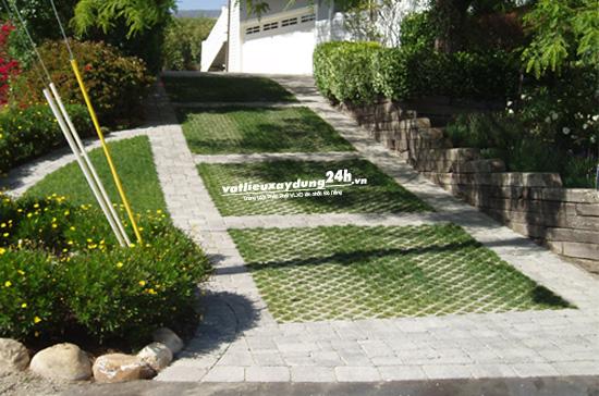 Gạch trồng cỏ VĐV08