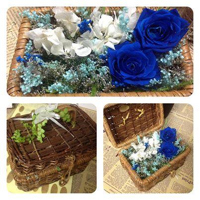 Vali Hoa hồng Xanh Magic cất giữ những ước mơ bí ẩn