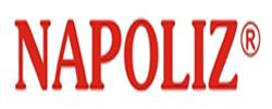Napoliz-logo