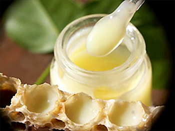 sữa ong chúa tươi, sua ong chua, royal jelly, vinapi