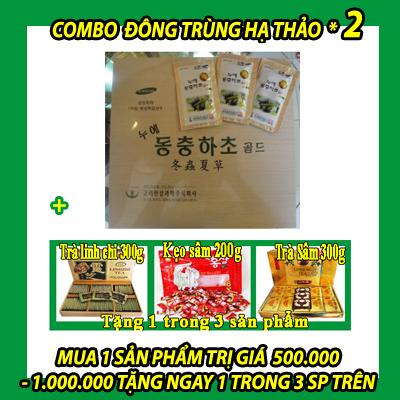 DONG-TRUNG-HA-THAO