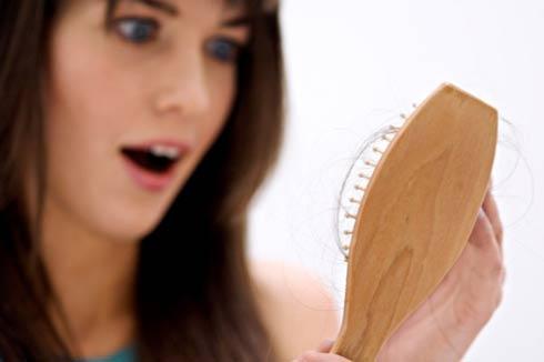 Nấm linh chi đỏ - giải pháp cho bệnh rụng tóc