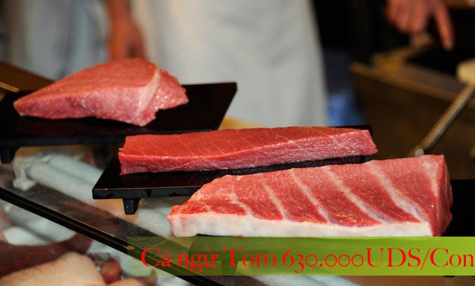 Cá ngừ Toro