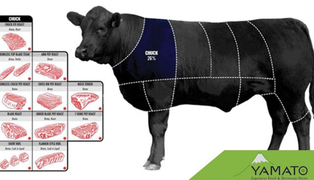 vị trí lấy thịt bò