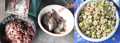 máy cắt thái cá