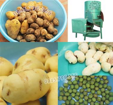 máy gọt vỏ khoai tây, khoai lang
