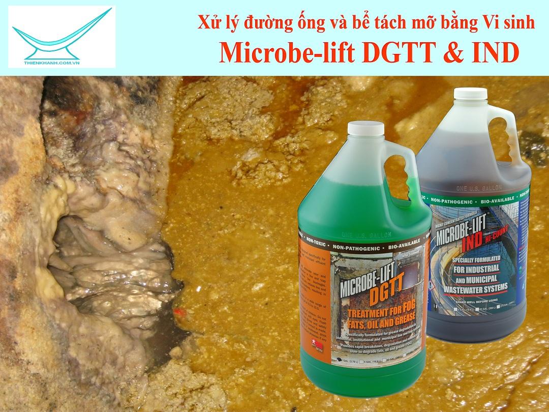 Vi sinh xử lý dầu mỡ mùi hôi đường ống và bể tách mỡ Microbelift IND DGTT