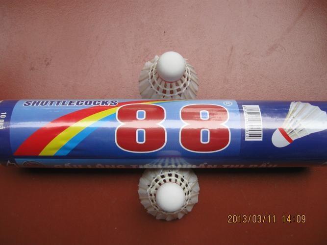 qua-cau-long-88