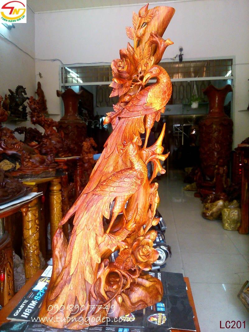 Chim Công