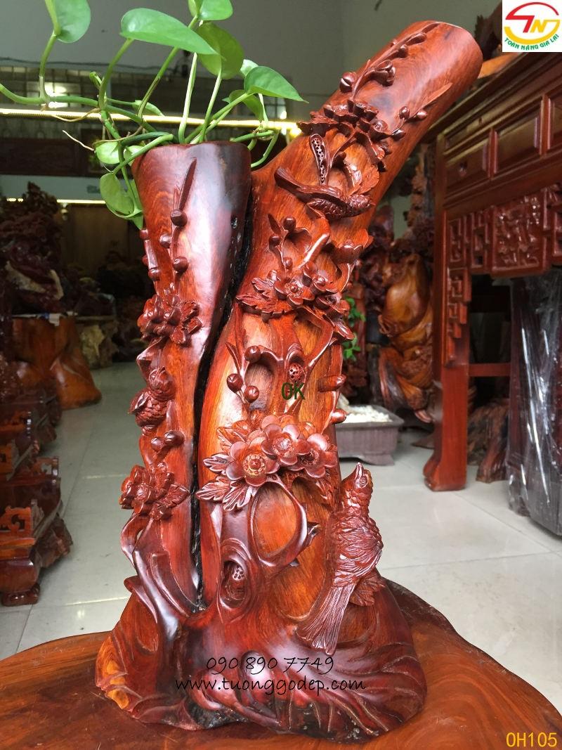 Mai điểu gỗ hương