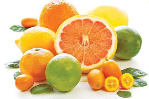Trái cây họ cam quýt cũng rất tốt cho bà bầu 3 tháng
