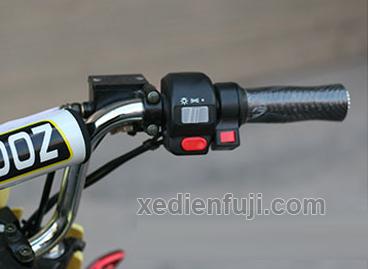 xe máy điện ZOOMER X4