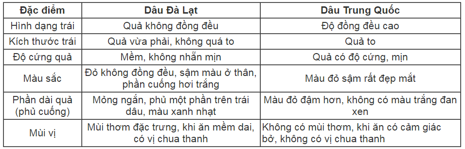 Cách phân biệt dâu tây Đà Lạt với dâu tây Trung Quốc