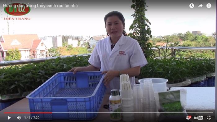 dụng cụ để trồng rau thủy canh