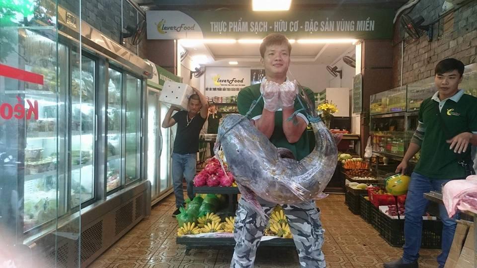 cá chiên 30kg ở CleverFood