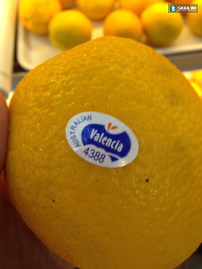Ý nghĩa của các con số trên tem dán hoa quả nhập khẩu, cam thường